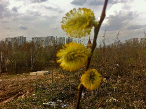 Братеево, метро, весна